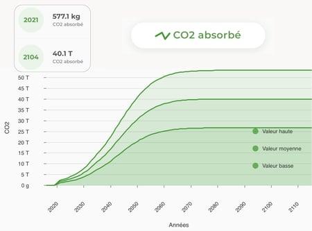 Blog post Ecotree - Un impact mesurable